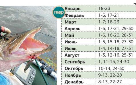 да каково нельзя ловить рыбу