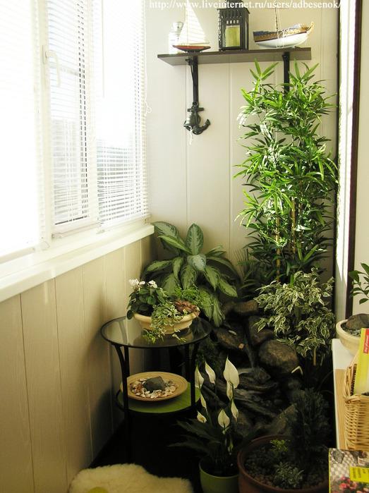 Зеленый уголок на балконе.