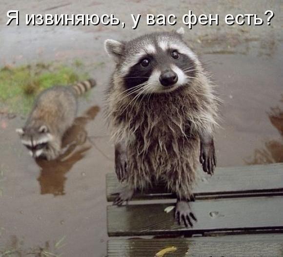 Нам не жить друг без друга...))