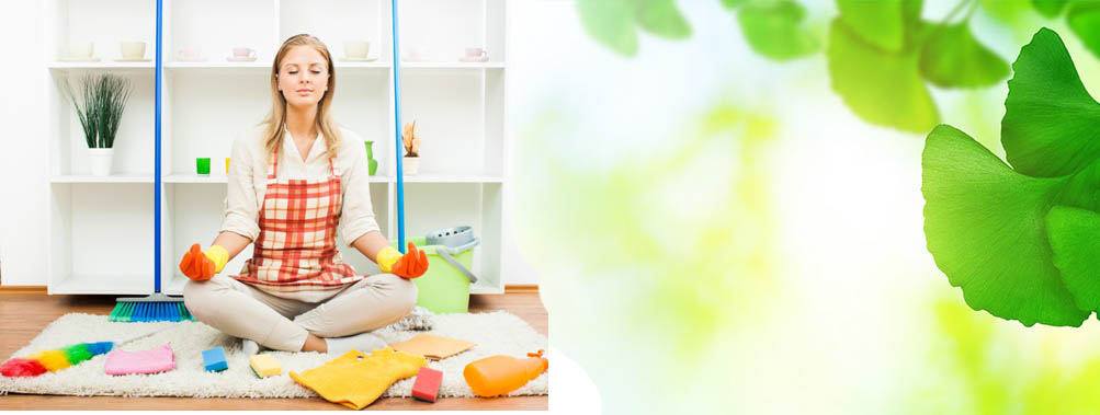 Домашние секреты: чистота в доме без химии