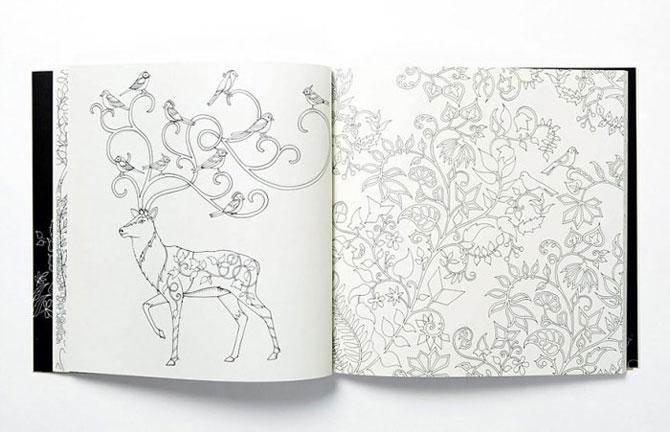 Раскраски для взрослых - суперпопулярная новинка от британского иллюстратора