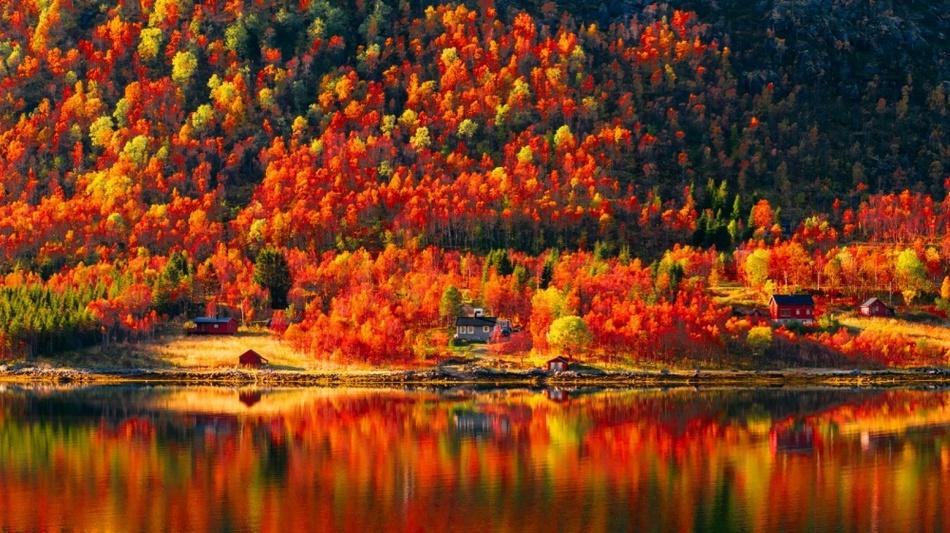 Осень ничем не хуже лета. Тё…
