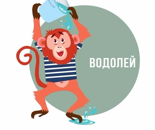 Гороскоп Водолея на 2017 год Обезьяны