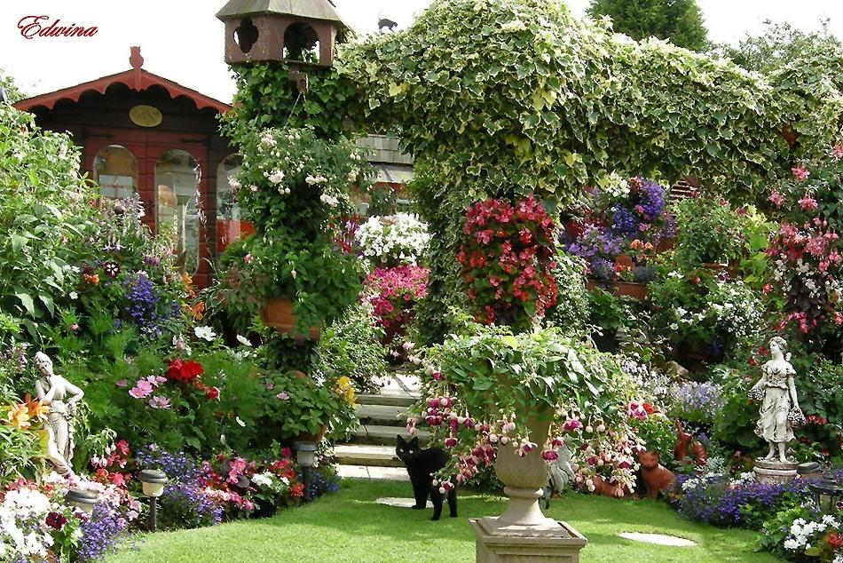 Красивый сад своими руками в
