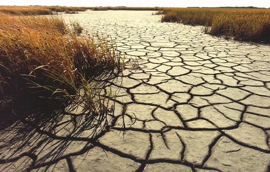 Засуха на Кубе бьёт рекорд