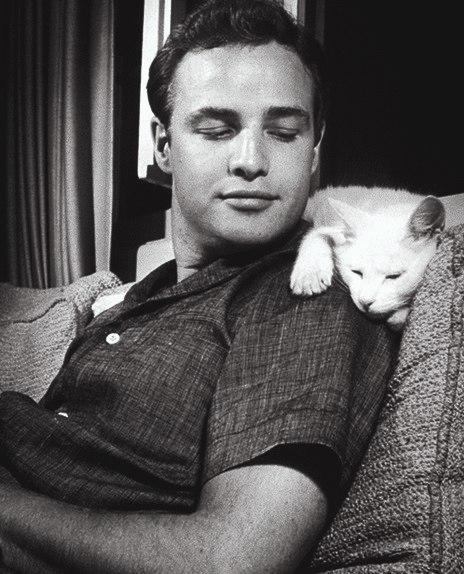 Марлон Брандо с животными