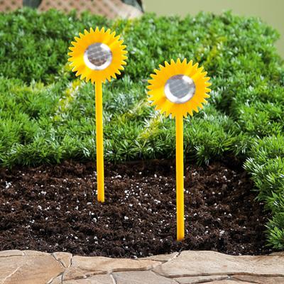Сохранность вашего урожая, или как избавиться от птиц на огороде