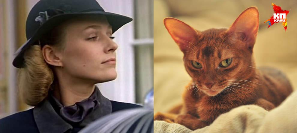 Шерлок Холмс завел бы таксу... Узнайте, какое животное вам подходит