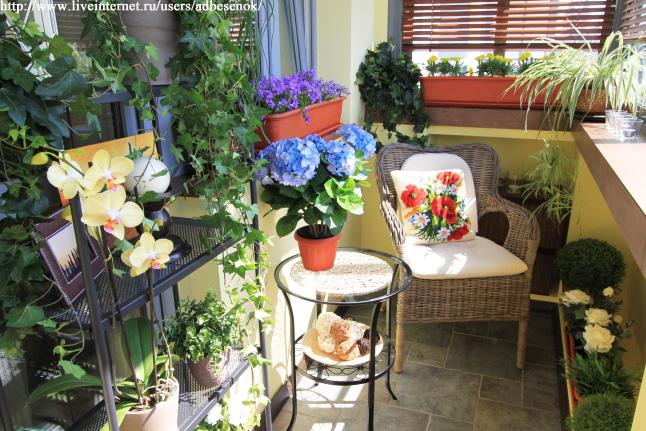 Идеи для цветов в квартире своими руками 97