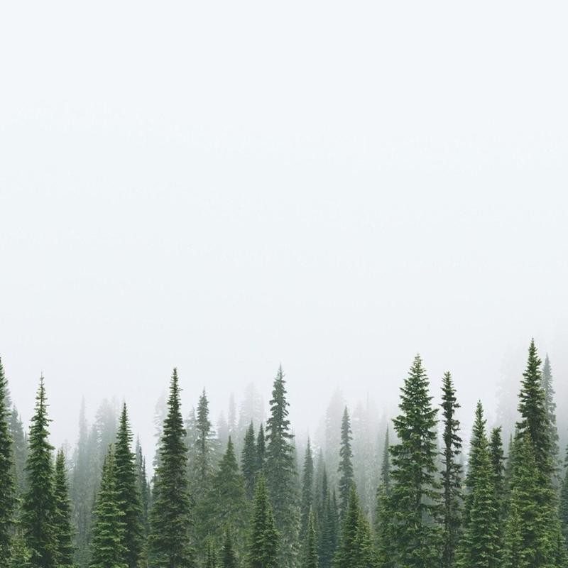 20 снимков, к которым нечего добавить: минимализм в фотографии