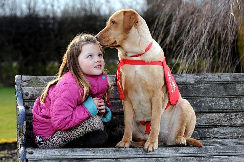 Собака каждый день спасает жизнь своей юной хозяйки