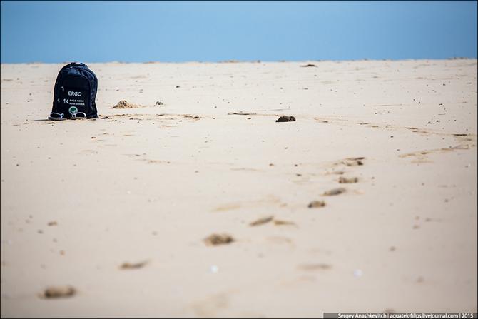 junger mann sucht frau gegen taschgeld Seewald