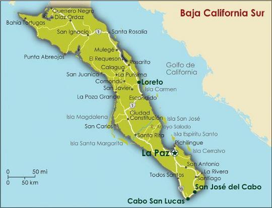 Лукавая Калифорния