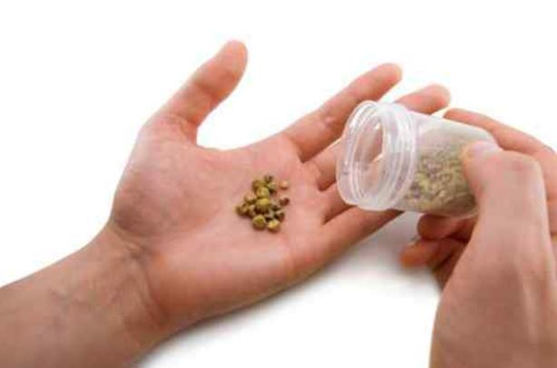Камни в почках — дикая боль. Выводим без операции простыми рецептами. Травы, которые безболезненно дробят камешки