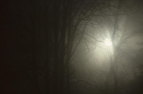 9 научных фактов о ночных кошмарах