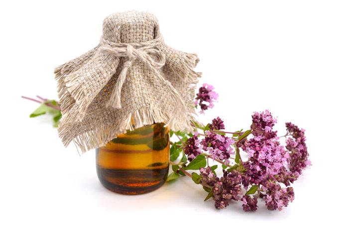 Польза масла душицы для здоровья