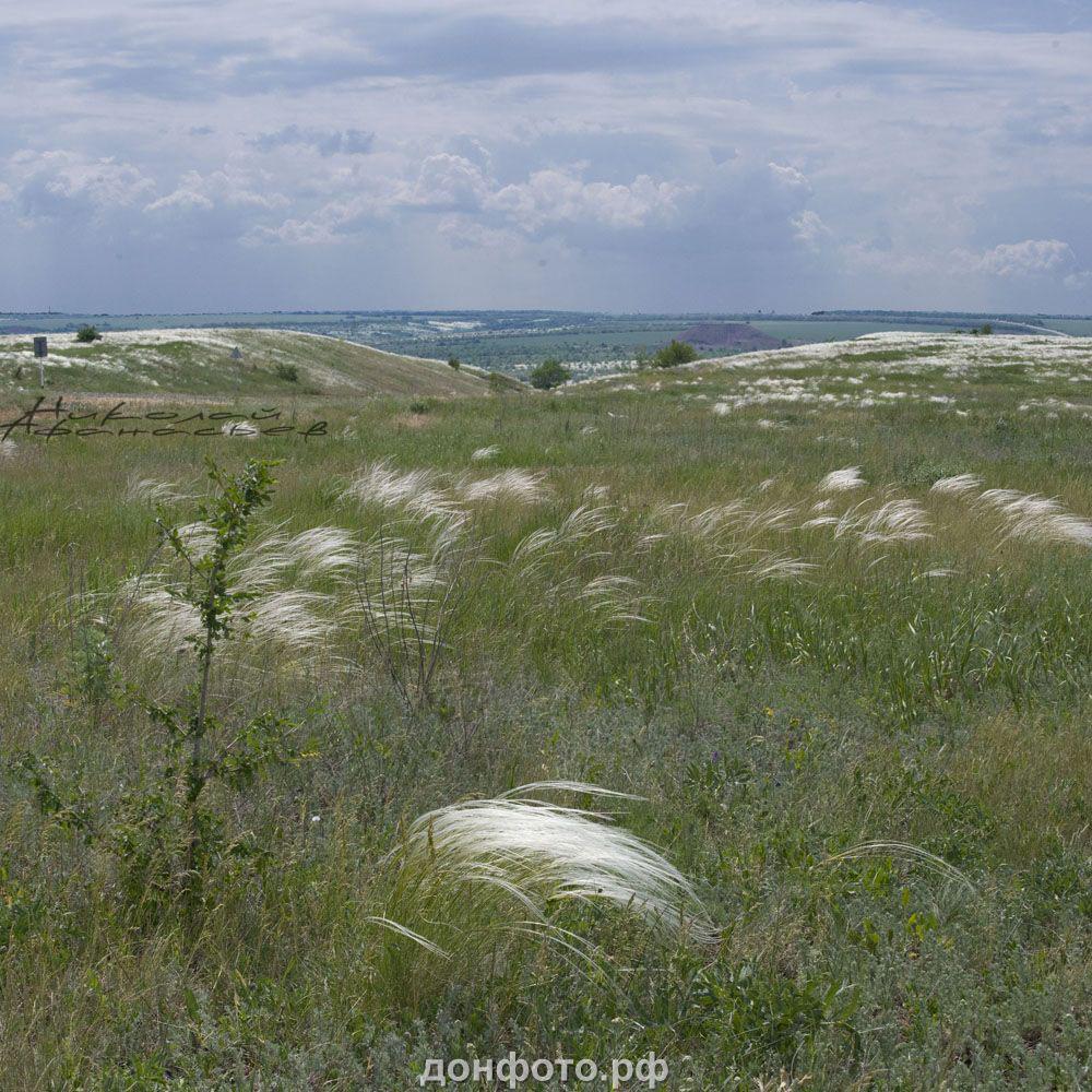 Фото степи в теме - Природа Донского края