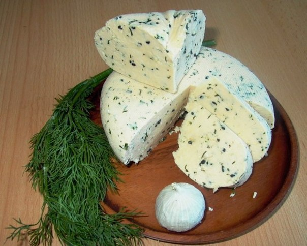 Домашний-сыр (604x484, 66Kb)