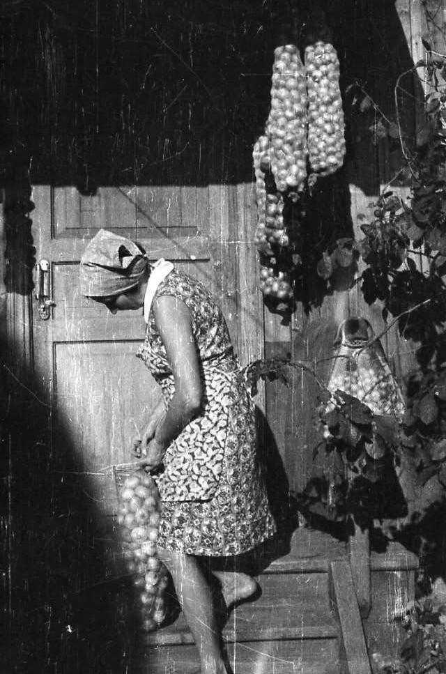 Мама и счастье...луковое! Урожайный август 1969 года.