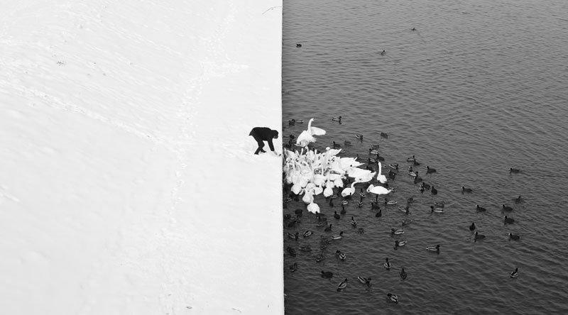 40 удивительных фотографий, в которые трудно поверить.
