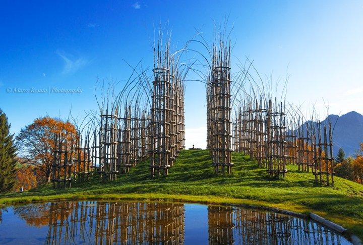 собор из деревьев джулиано маури (11)