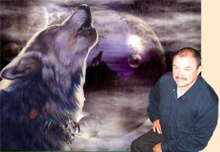 Охота на волков в Карелии