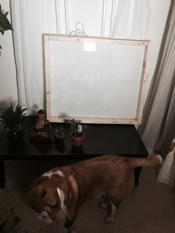 Больше света: как сделать поддельное окно в подвале - «Хорошее настроение»