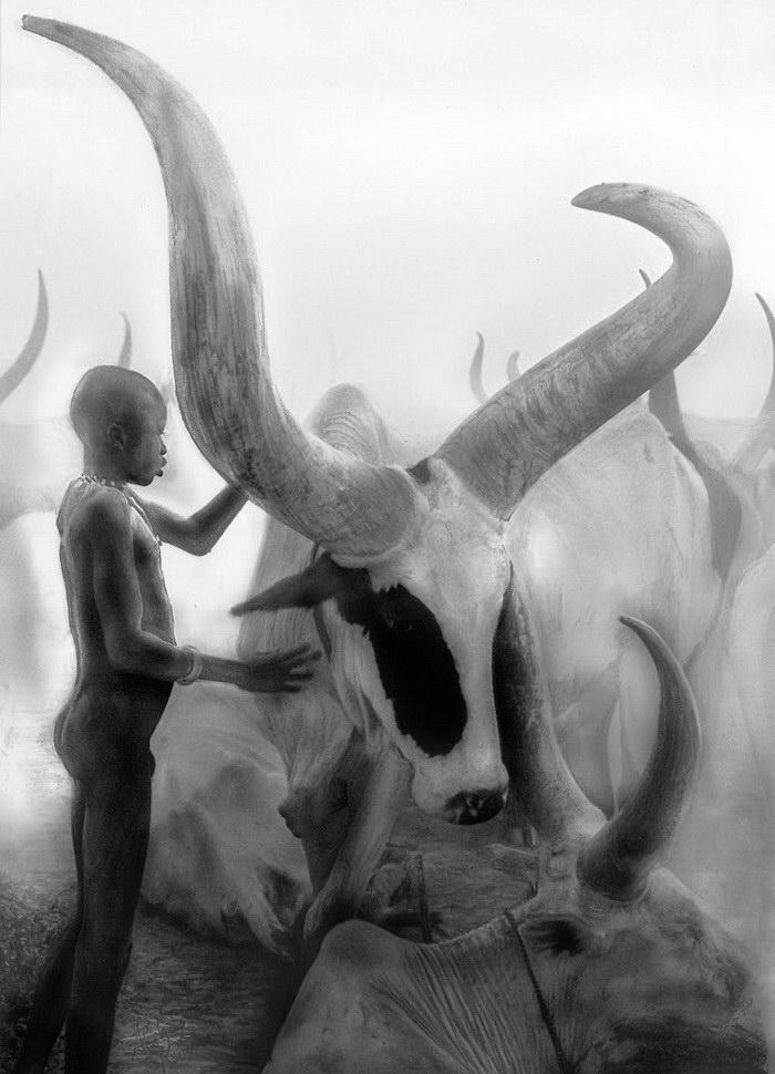 Гиперреалистичные рисунки Akshay Kumar
