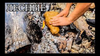 Дикая кухня - РЫБА В ГЛИНЕ