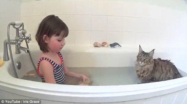 Кошка помогла больной девочке научиться рисовать, говорить и плавать
