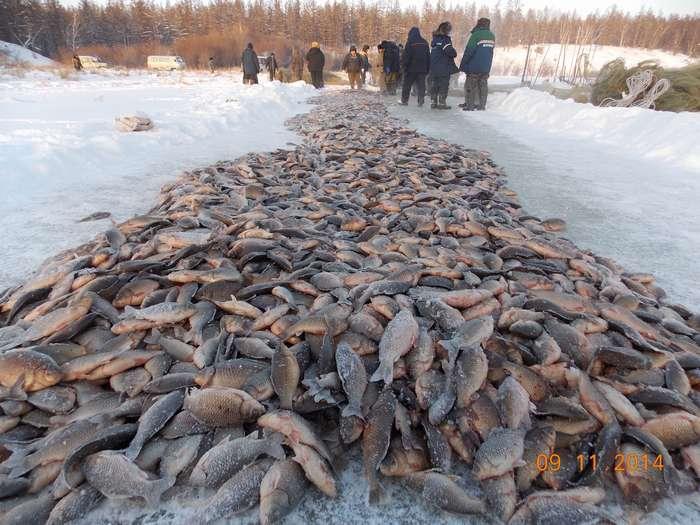 река большая куча рыбалка