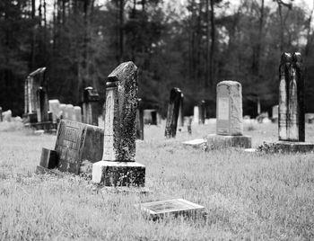 Парочка устроила на кладбище пикник, приспособив под мангал надгробие