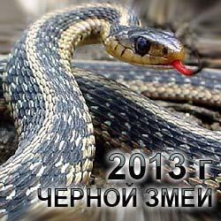 Как встречать Новый год 2013 Черной Водяной Змеи?