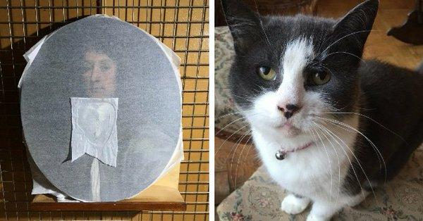 Кошка - искусствовед