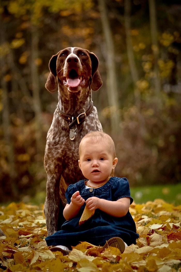 Защитник  дружба, ребенок, собака