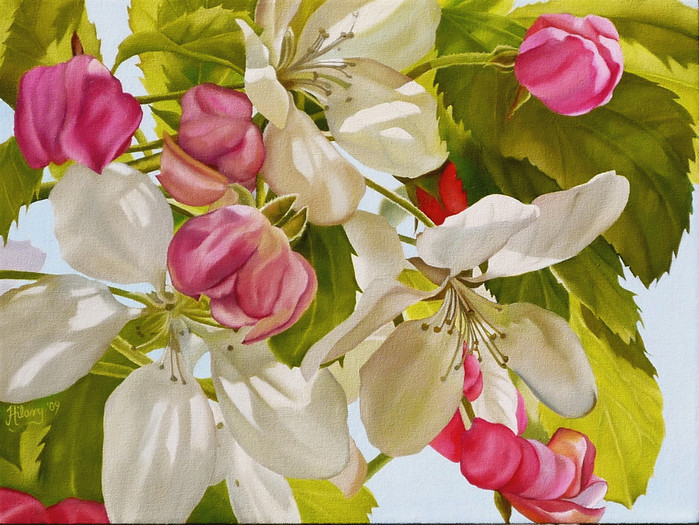 Apple Blossom Time-XL (700x525, 155Kb)