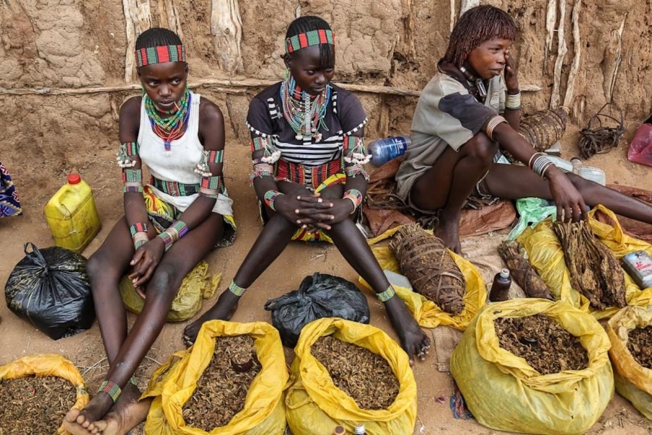 Насилие, грабежи и геноцид. …