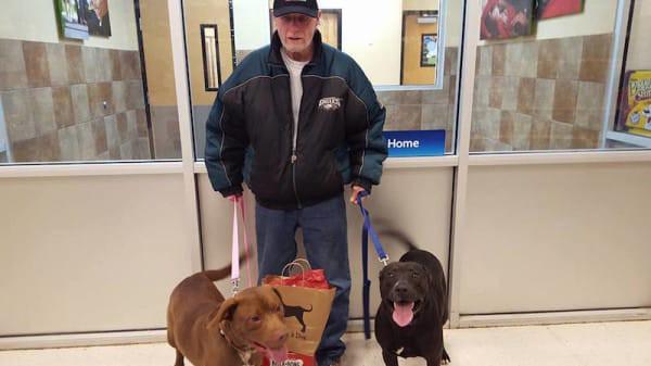 Ветеран хотел выкупить своих собак из приюта. Но поступок сотрудницы приюта растопит сердце любого!
