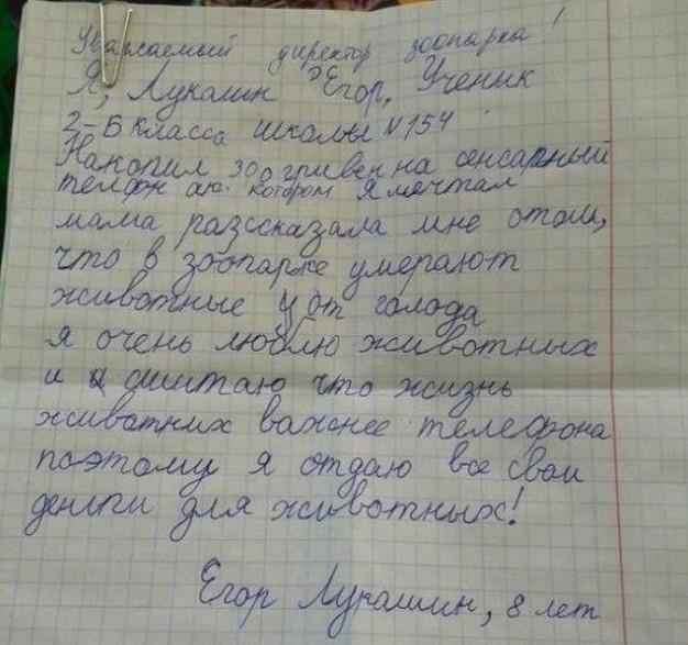 5. Егор Лукашин добро, зак галифианакис