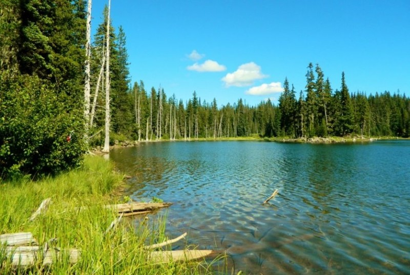 Озеро Пауэлл (США) наша планета, озера, самые опасные