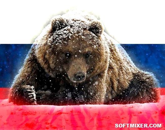 Почему именно медведь стал символом России. 1 июня День Северного флота России!
