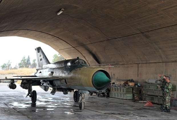 Любимый ястреб дома Асадов