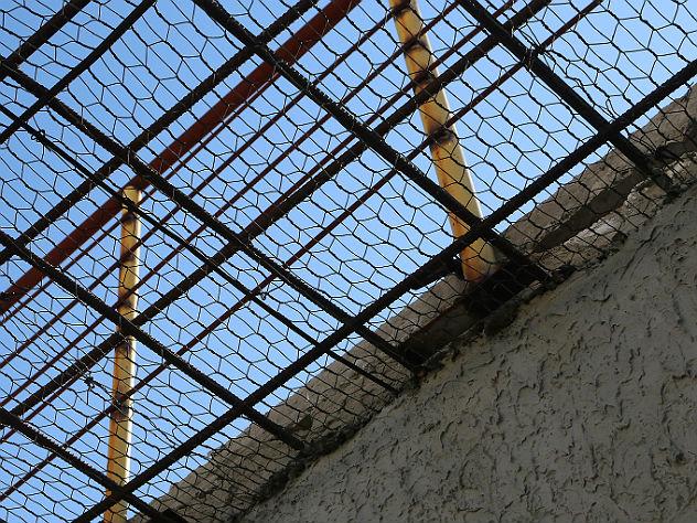 Жителя Курска посадили на 5 лет за ДТП с пятью погибшими детьми