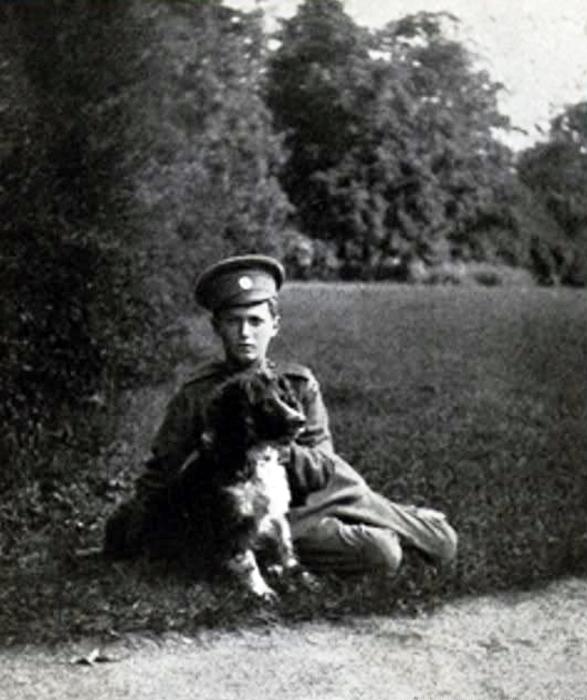 История последних дней царской семьи глазами собаки
