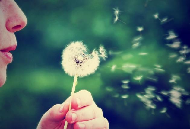 Причина весенней аллергии и как с ней бороться