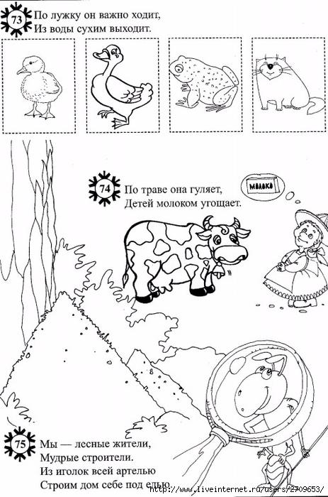 Рассказы загадки картинки