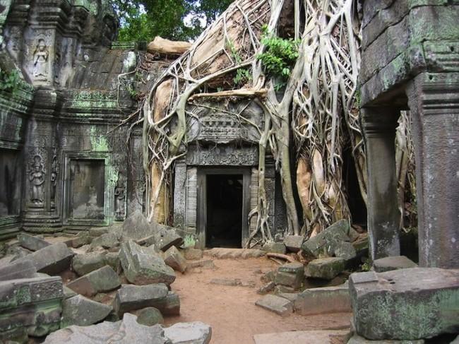 Храм Ангкор-Ват в Камбодже заброшенное, природа, разрушение, цивилизация