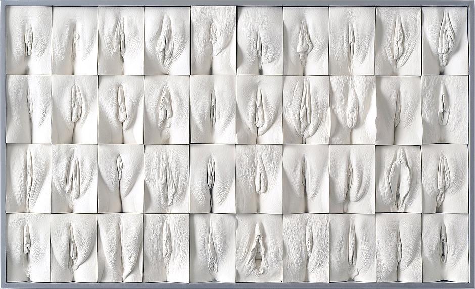 Види женских гениталий фото фото 317-330