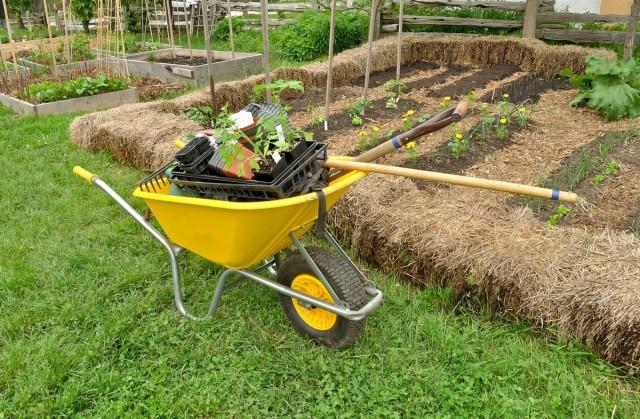 Правильные грядки — меньше работы, больше урожая