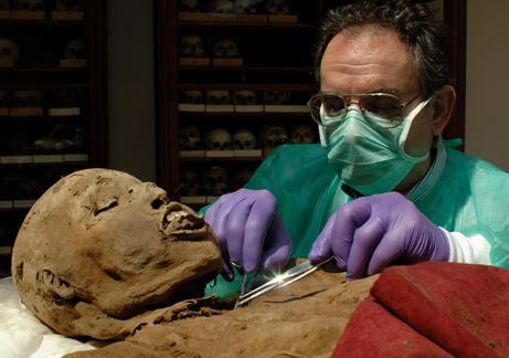 Это заставило ученых предположить, что египтяне контактировали с жителями Америки задолго до европейцев. Противники же этой теории утверждают, что образцы мумий могли быть загрязнены в наше время.